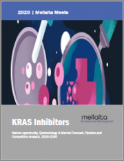KRAS Inhibitors - Market Opportunity, Epidemiology & Market Forecast, Pipeline and Competitive Analysis, 2020-2030