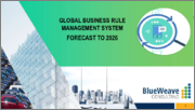 Global Business Rule Management System by Operating environment, by vertical, By end-user Market 2016-2026
