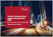 Operator Business Services: Singapore forecast 2019-2024