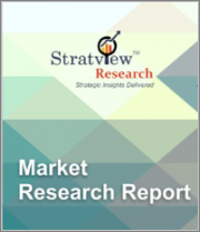 Lightweight Fillers Market by Material Type, by Microsphere Type, by Application Type, and by Region, Trend, Forecast, Competitive Analysis, and Growth Opportunity: 2020-2025