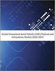 Global UAV Payload and Subsystems Market 2020-2024