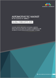 Automotive TIC Market with COVID-19 impact, by Service (Testing, Inspection, Certification), Sourcing, Application (Vehicle Inspection, Electrical & Components), and Geography; Periodic Technical Inspection Market, by Region - Global Forecast to 2025