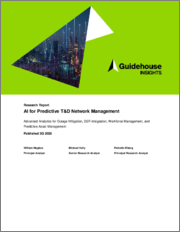 AI for Predictive T&D Network Management: Advanced Analytics for Outage Mitigation, DER Integration, Workforce Management, and Predictive Asset Management