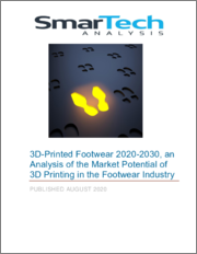 3D-Printed Footwear 2020-2030, an Analysis of the Market Potential of 3D Printing in the Footwear Industry
