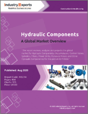 Hydraulic Components - A Global Market Overview