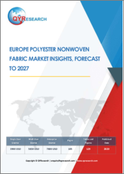 Europe Polyester Nonwoven Fabric Market Insights, Forecast to 2027
