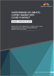 Narrowband IoT (NB-IoT) Chipset Market with COVID-19 impact, by Device (Smart Meters, Smart Parking), Deployment (Guard, In-Band, Stand-Alone), Vertical, & Region - Global Forecast to 2025