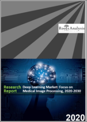 Deep Learning Market: Focus on Medical Image Processing, 2020-2030