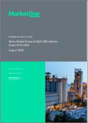 Banks Global Group of Eight (G8) Industry Guide 2015-2024