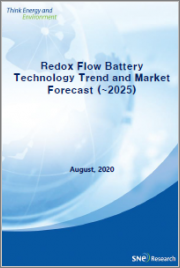 <2020> Redox Flow Battery Technology Trend and Market Forecast (~2025)