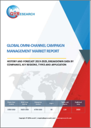 Global Omni-channel Campaign Management Market Report, History and Forecast 2019-2025, Breakdown Data by Companies, Key Regions, Types and Application