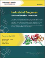 Industrial Enzymes - A Global Market Overview