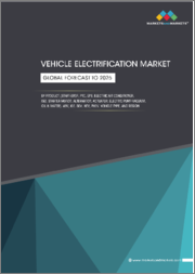 Vehicle Electrification Market by Product (Start-Stop, PTC, EPS, Electric Air Conditioner, ISG, Starter Motor, Alternator, Actuator, Electric Pump-Vacuum, Oil & Water), 48V, ICE, BEV, HEV, PHEV, Vehicle Type, and Region - Global Forecast to 2025