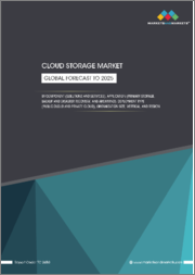 Cloud Storage Market by Component (Solutions & Services), Application (Primary Storage, Backup & Disaster Recovery, & Archiving), Deployment Type (Public Cloud & Private Cloud), Organization Size, Vertical, & Region - Global Forecast to 2025