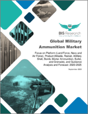Global Military Ammunition Market: Focus on Platform (Land Force, Navy and Air Force), Product (Missile, Rocket, Artillery Shell, Bomb, Mortar Ammunition, Bullet, and Grenade), and Guidance - Analysis and Forecast, 2020-2025