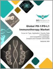 Global PD-1/PD-L1 Immunotherapy Market: Focus on Type, Application, Country Data (14 Countries), and Competitive Landscape - Analysis and Forecast, 2019-2030