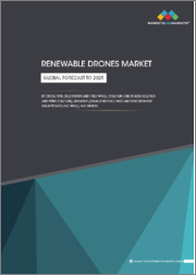 Renewable Drones Market by Drone Type (Multirotor and Fixed Wing), Solution (End-to-End Solution and Point Solution), End user (Solar (Photovoltaics and Concentrated Solar Power) and Wind), and Region - Global Forecast to 2025