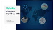 Global Risk Report Quarterly Update - Q2 2020