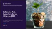 Citigroup - Enterprise Tech Ecosystem Series