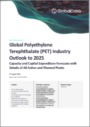 Global Polyethylene Terephthalate (PET) Industry Outlook to 2024 - Capacity and Capital Expenditure Forecasts with Details of All Active and Planned Plants