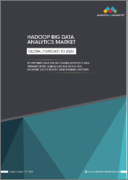 Hadoop Big Data Analytics Market by Component (Solutions and Service), Deployment Mode, Organization Size, Business Function, Vertical (BFSI, Healthcare and Life Sciences, Manufacturing), and Region - Global Forecast to 2025
