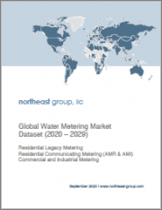 Global Water Metering Market Dataset (2020 - 2029)
