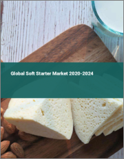 Global Soft Starter Market 2020-2024