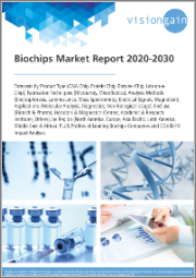 Biochips Market Report 2020-2030: Forecasts by Product Type, Fabrication Techniques, Analysis Methods, Applications, End-use, by Region, plus Profiles of Leading Biochips Companies and COVID-19 Impact Analysis
