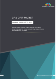 CF & CFRP Market by Source (Virgin, Recycled), Precursor (PAN, Pitch, Rayon), Resin (Thermosetting, Thermoplastic), Manufacturing Process, End-use Industry, and Region - Global Forecast to 2025