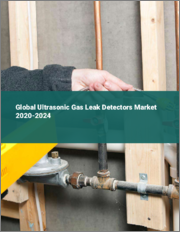 Global Ultrasonic Gas Leak Detectors Market 2020-2024