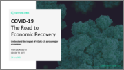 COVID-19 The Road to Economic Recovery - Thematic Research