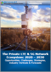 LTE & 5G for Critical Communications 2020-2030: Opportunities, Challenges, Strategies & Forecasts - Report Package Encompasses Two Comprehensive Reports Covering the Use of LTE and 5G NR Networks for Critical Communications