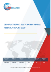 Global Ethernet Switch Chips Market Research 2020