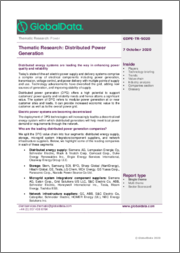 Distributed Power Generation - Thematic Research