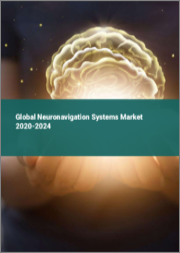 Global Neuronavigation Systems Market 2020-2024