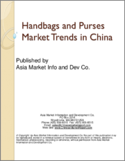 Handbags and Purses Market Trends in China
