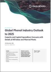 Global Phenol Industry Outlook to 2024 - Capacity and Capital Expenditure Forecasts with Details of All Active and Planned Plants