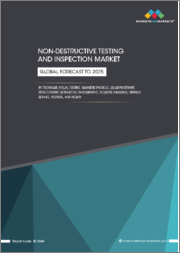 NDT and Inspection Market with COVID-19 Impact by Technique (Visual Testing, Magnetic Particle, Liquid Penetrant, Eddy-Current, Ultrasonic, Radiographic, Acoustic Emission), Method, Service, Vertical, and Region - Global Forecast to 2025