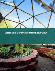 Global Solar Cover Glass Market 2020-2024