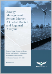 Energy Management System Market - A Global Market and Regional Analysis: Focus on Energy Management System Product and Application, Stakeholders Analysis and Country Analysis - Analysis and Forecast, 2019-2025