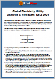 Global Electricity Utility Analysis & Forecasts Ed 2 2021