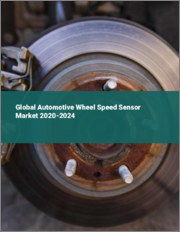 Global Automotive Wheel Speed Sensor Market 2020-2024