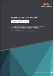 PVDF Membrane Market by Type (Hydrophilic, Hydrophobic), Technology, Application (General Filtration, Sample Preparation, Bead-based Assays), End-use Industry (Biopharmaceutical, Industrial, Food & & Beverage), and Region - Global Forecast to 2025