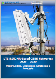 LTE & 5G NR-Based CBRS Networks: 2020 - 2030 - Opportunities, Challenges, Strategies & Forecasts