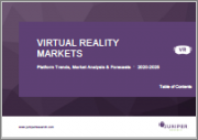 Virtual Reality Markets: Platform Trends, Market Analysis & Forecasts 2020-2025