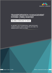 Transportation Management System (TMS) Market by Component (Solutions and Services), Transportation Mode (Roadways, Railways, Airways, and Maritime), Deployment Type (On-premises & Cloud), Organization Size, Vertical, & Region - Global Forecast to 2025