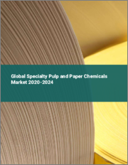 Global Specialty Pulp and Paper Chemicals Market 2020-2024