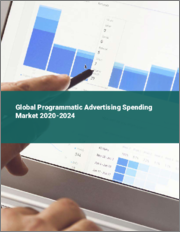 Global Programmatic Advertising Spending Market 2020-2024