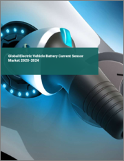 Global Electric Vehicle Battery Current Sensor Market 2020-2024