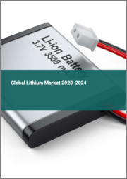 Global Lithium Market 2020-2024
